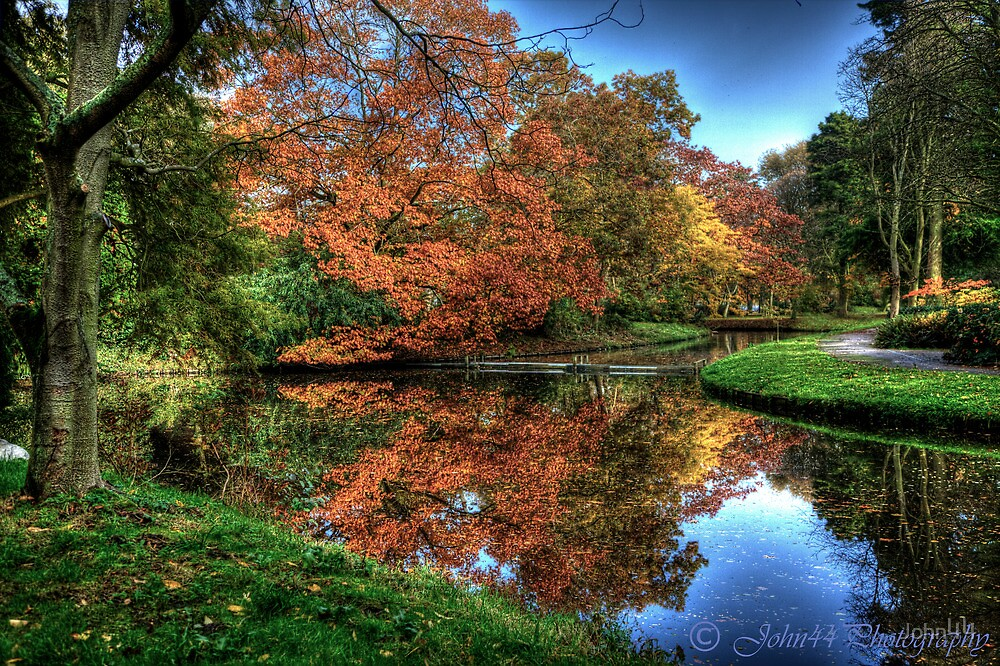 Colors of Autumn in Holland by John44