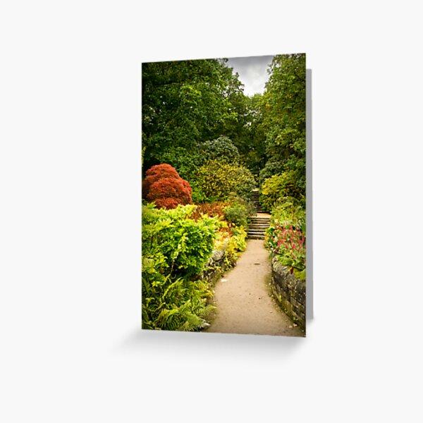 Autumn Walk at Harlow Carr Greeting Card