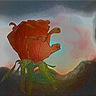Rose And Sky by Chet  King
