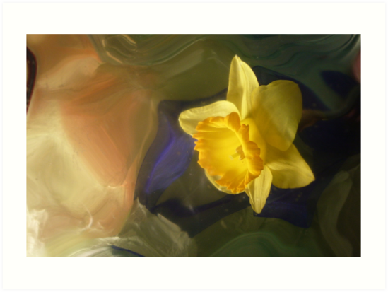 Daffodil by Hectagon