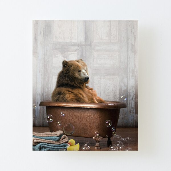 Bear in Bathtub Canvas Mounted Print