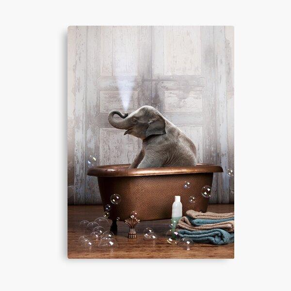 Elefante en bañera Lienzo