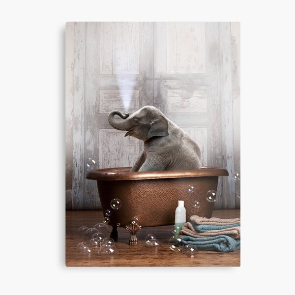 Elephant in Bathtub Metal Print