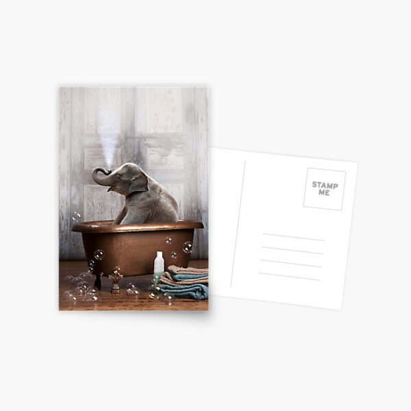 Elephant in Bathtub Postcard