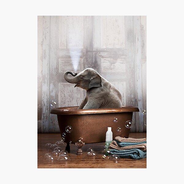 Elephant in Bathtub Photographic Print