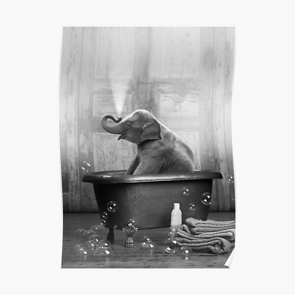 Elephant in Bathtub Poster