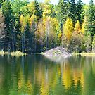 Autumn Colors on Piperell Lake, by MaeBelle