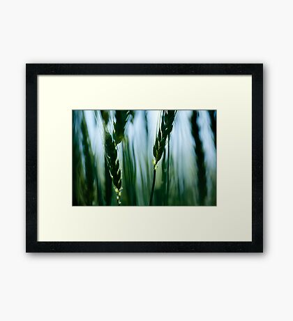 out of blur ears Framed Print