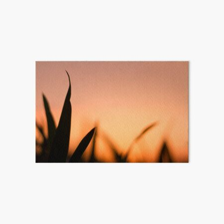 Orange Sunset Art Board Print