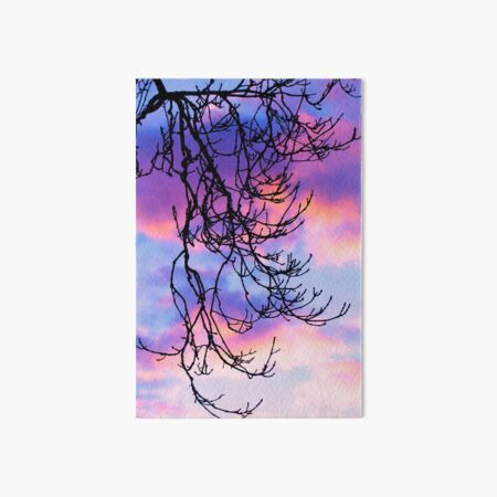 Ash Tree Sunset Silhouette Art Board Print