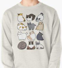 Katzen Katzen Katzen Sweatshirt