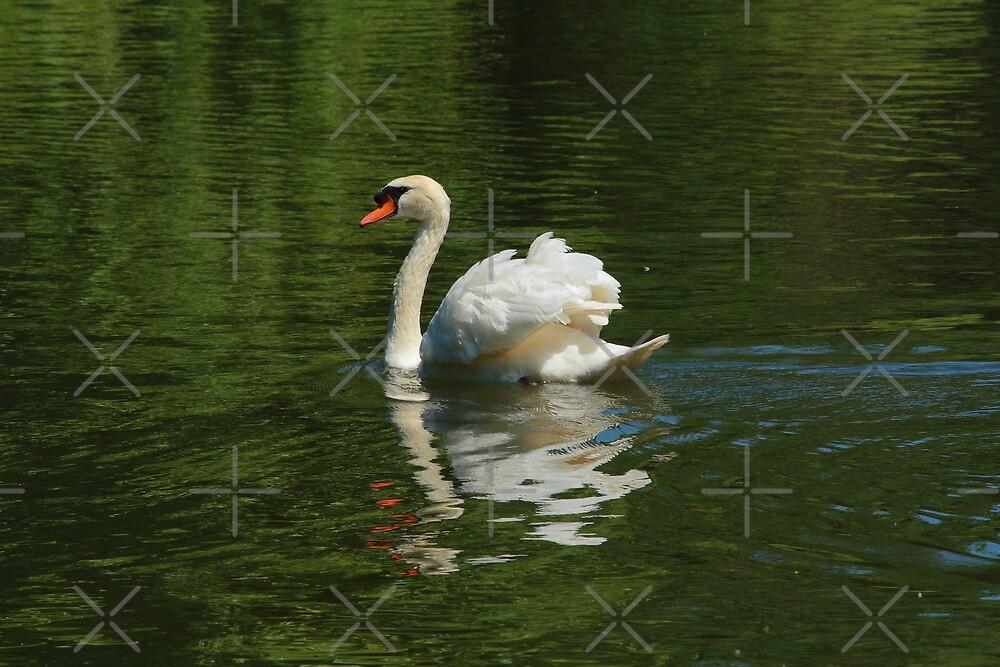 Swan in green by Jicha