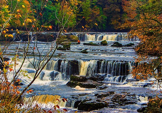Aysgarth Falls by Trevor Kersley