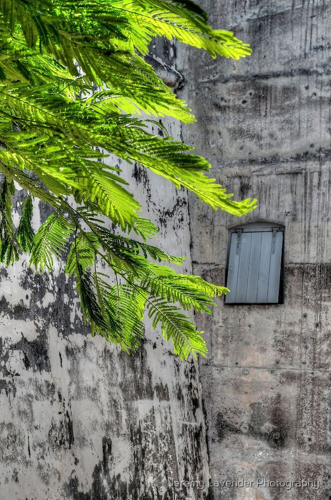 The Hidden Window at Fort Charlotte in Nassau, The Bahamas by Jeremy Lavender Photography