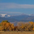 Boulder County Colorado Continental Divide Autumn View by Bo Insogna