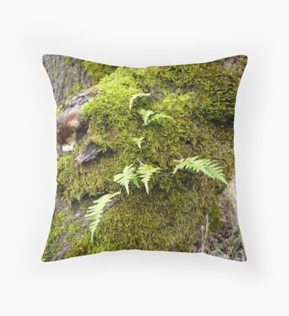 Licorice Root Fern Throw Pillow