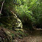 Brambletye Rocks by Sue Robinson