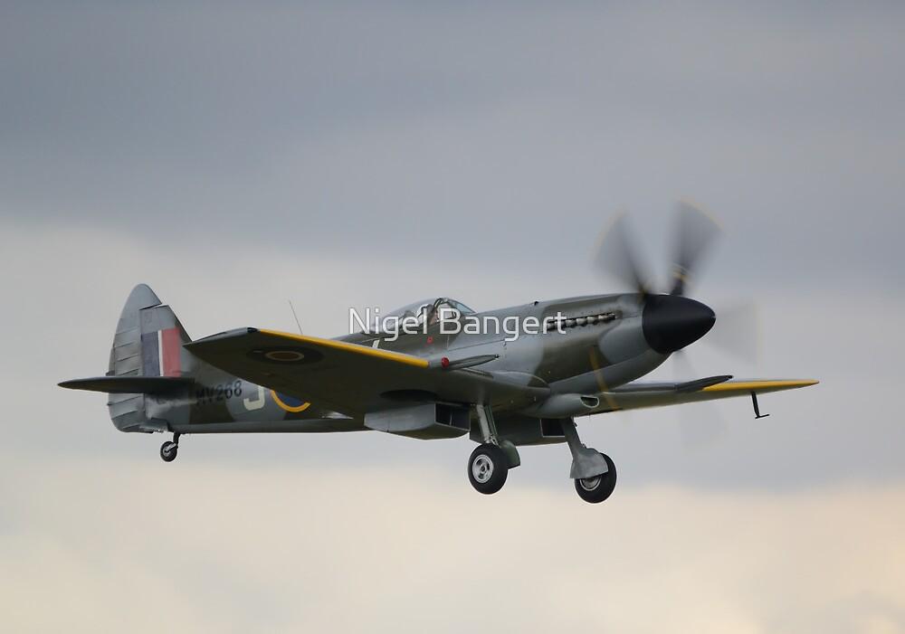 Supermarine Spitfire Mk XIV by Nigel Bangert