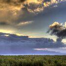 Sunset 5/26/12 by NealStudios