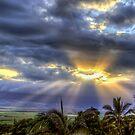 Maui Sunset 6/7/12 by NealStudios