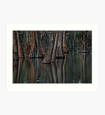 Darkness at the Edge of the Bayou Art Print