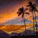 Maui Sunset 10/6/12 by NealStudios