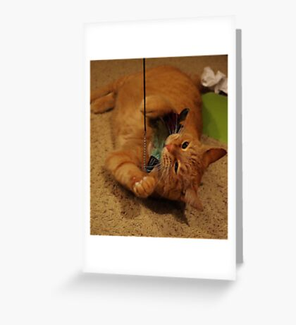 Attack of The Feather Toy Greeting Card