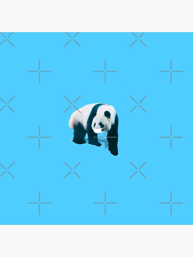 Panda in face mask by KatyaHavok