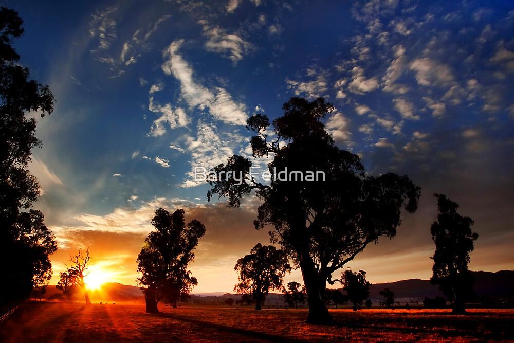 Country dusk.  by Barry Feldman