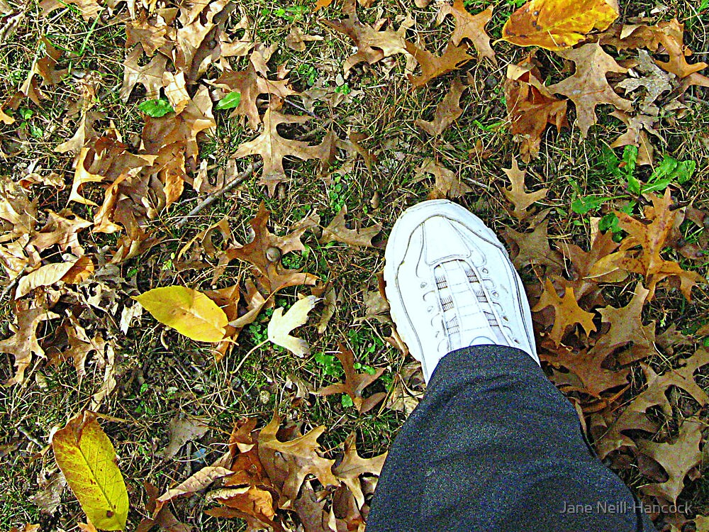 Resolution - To Get Outside and Walk More by Jane Neill-Hancock
