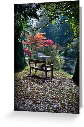 Meditation Seat by Colin Metcalf