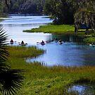 Let's Kayak! by Judy Wanamaker