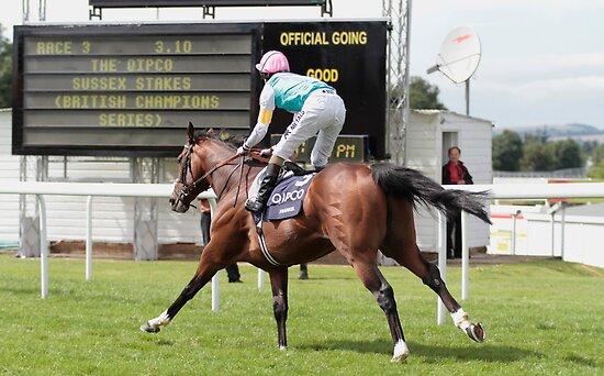 Frankel wins again............ by lulu kyriacou
