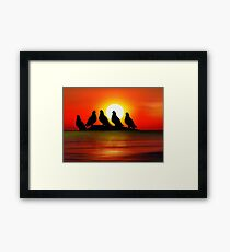 Birds at Sunset point Framed Print