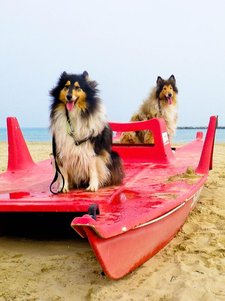 we sail by BellatrixBlack