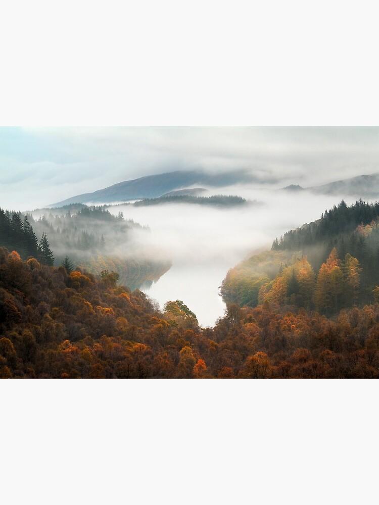 Drunkie Mist by Shuggie