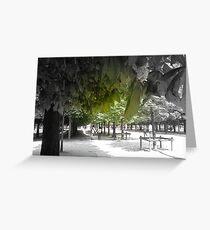 Jardin des Tuileries, Paris Greeting Card