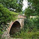 Bridge over Forest Way by Sue Robinson