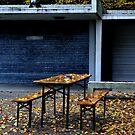 2012 - summer 's gone by Ursa Vogel