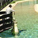 Now that beats feeding the Goldfish........! by Roy  Massicks