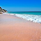 Pink Sands Bermuda.. by buddybetsy
