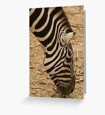 I got Stripes Greeting Card