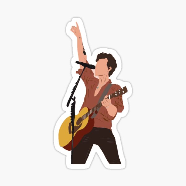 shawn mendes le contour de la tournée Sticker