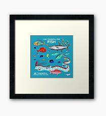 I Am Thankful For Fish Framed Print