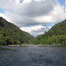 Sungai Biru by Reef Ecoimages