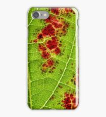 wine leaf macro iPhone Case/Skin