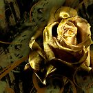 LIGHT PAINTED ROSE by RonelBroderick