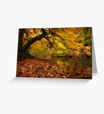 Nidd Gorge in Autumn Greeting Card