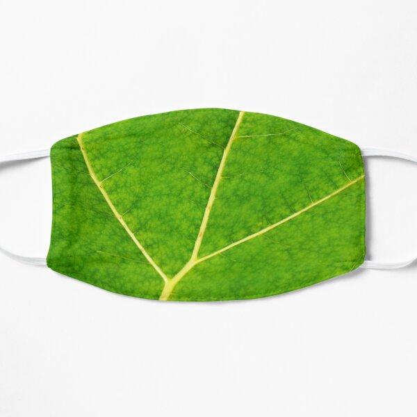 Green leaf veins texture Mask