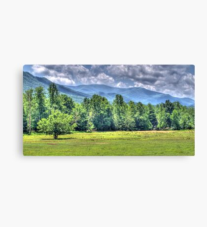 The Cove in HDR Canvas Print